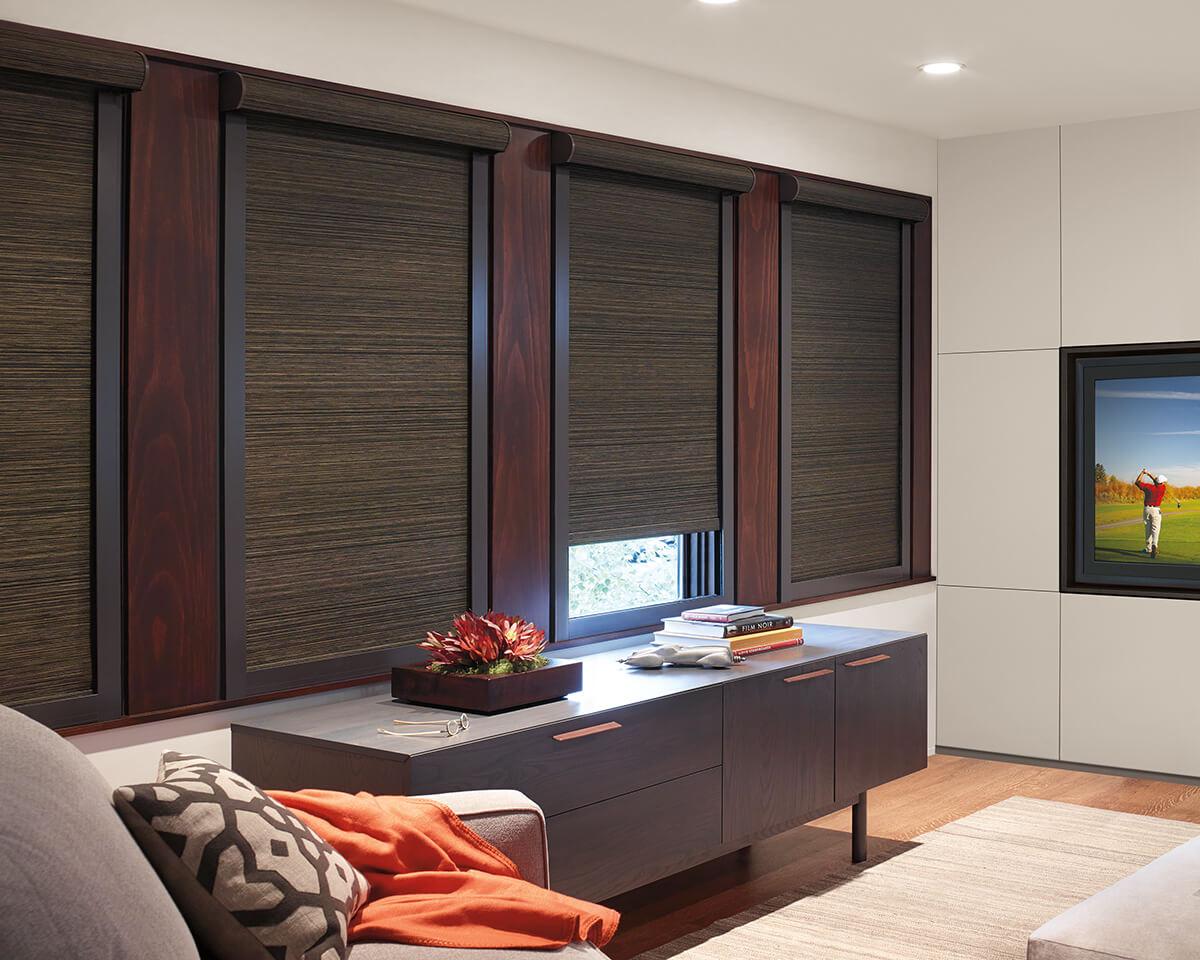 designer roller shades in modern living room