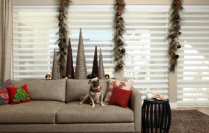 Blinds shades for holidays charlotte nc hunter douglas pirouette window shadings in the living room solutioingenieria Image collections