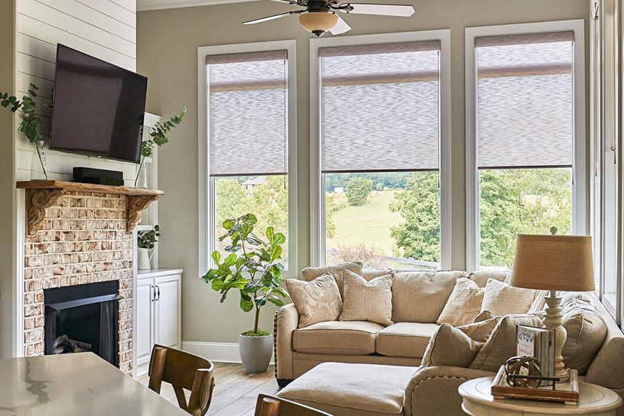 Living Room Roller Shades